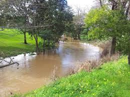 Traralgon Creek after rain