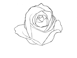 Small Picture Drawn Rose 58986931 Flowers Set Hand Vector Etch Stylejpgver6