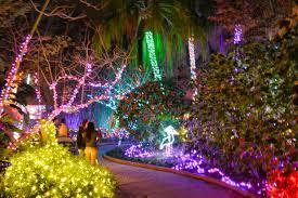 Botanical Gardens Christmas Lights 2018 File Florida Botanical Gardens Dsc 2642 Pp 38612374506 Jpg