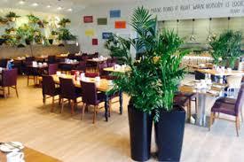 office plant displays. Modren Office Indoor Office Plants Rental Cork To Office Plant Displays G