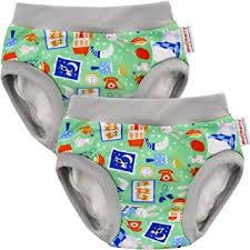 Blueberry Training Pants Bundle Of 2 Medium Bedtime Story