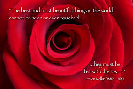Quotes On Roses And Beauty Best of Quotes About Beautiful Rose 24 Quotes