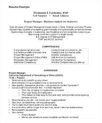 Business Management Resume Objective Business Management Resume Example Business Analyst Entry Level