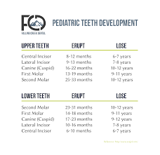 Teeth Age Chart Pediatric Teeth Development