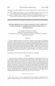 Establishment of a New Stink Bug Pest, Oebalus ypsilongriseus (Hemiptera:  Pentatomidae) in Florida Rice