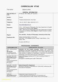 Easy Simple Resume Template Examples Luxury Simple Resume Example