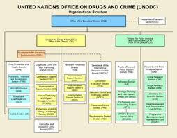 United Nations Organizational Chart About Unodc