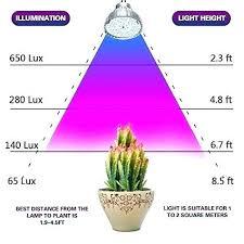 Led Light Distance Chart Grow Light Distance Chart Fresh Regulation And Daytime