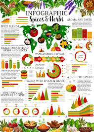 Spices Chart For Food Spices And Herbs Infographic With Vector Graphs And Charts Of