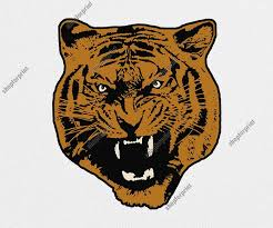 tiger face growling. Perfect Face Tiger Face Growling Vector To C