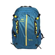 Patagonia arbor classic pack 25l Buy Wildcraft Backpack For Hiking Eiger 45 Pro Pro Blue 45l At Amazon In