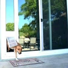 doggy door ideas pet doors doggy door ideas temporary pet door dog doors for sliding glass