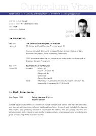 cv onlain cv and resume example free essay topics help uk online good essay