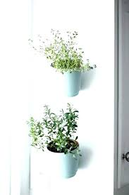 wall mounted plant holder hanging plant pot holders wall indoor wall mounted plant pot holders indoor
