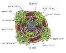 grow a herb garden design ideas