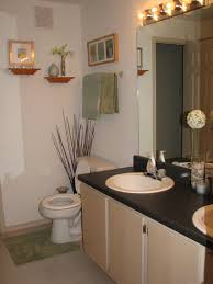Apartment Bathroom Designs Best Decoration