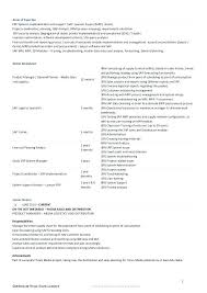 Strategic Planning Resume Examples Executive Resume Samples Resume