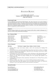 Resume Profile Examples Example Document And Resume