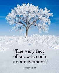 Quotes About Winter Beauty Best of 24 Absolutely Beautiful Quotes About Snow Snow Life Happens And