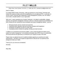 Job Resume Cover Letter New Resume Sample For Development Sector