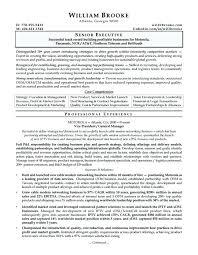 Ceo Resume Template Impressive Sample Resume Ceo Resume Templates Free Word For Resume Template