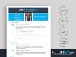 Echo 2 Layer Blue Banner Resume Template Resumgocom