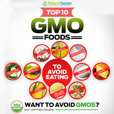 gmo foods list top 10 worst foods