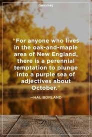 Fall Quotes Fascinating 48 Fall Season Quotes Best Sayings About Autumn
