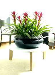 contemporary garden treasures planter garden garden treasures ceramic round planter