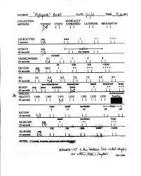 Urinalysis Result Interpretation Chart Your Dog Or Cat S Urinalysis Results