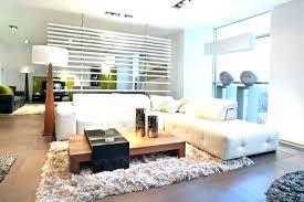family room rugs houzz