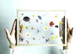 pressed flowers in glass pressed flowers in glass frames flowers pressed between glass frame diy pressed