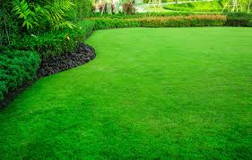 How Much Should Lawn Care Cost Heritage Lawns Kansas City