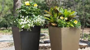 flower pots for planting