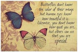 Butterfly Quotes Beauteous Butterfly Quotes About Life Impressive Butterflies Know The Color Of