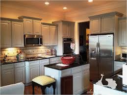 spray painting kitchen cabinets luxury kitchen cabinet paint kit spray painting kitchen cabinets