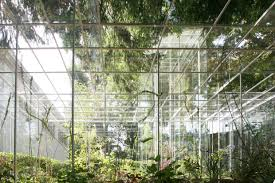 Japanese Landscape Architecture Junya Ishigami Japanese Pavilion Google Search Qrgh Connection