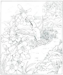 Nature Coloring Pages Staranovaljainfo
