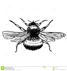 пчела насекомого эскиз татуировки иллюстрация штока иллюстрации