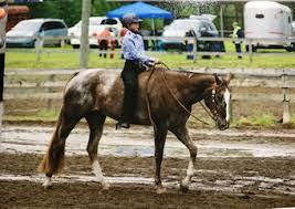 Grace Huff Champion 6th Grader District XV 2019 - ELIGIUS® - Refining  Equine Nutrition®