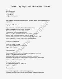 Physical Therapy Aide Resume Kevin Keinert's Integrated Circuit Parts For Sale Physical Therapist 24