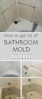 uncategorized black mold on ceiling awesome stylist and luxury how to remove mold from bathroom walls