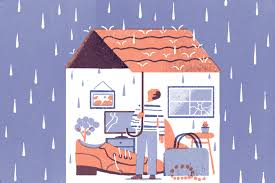 In some high risk countries this may ne a. What Does Homeowners Insurance Cover In 2021 Money