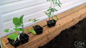are you a gardener looking for info on your newly built raised garden beds here is some information on filling and planting diy raised garden beds