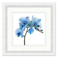 framed blue flower wall art