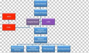 Corporate Organizational Chart With Board Of Directors Organizational Structure Hospital Board Of Directors Health