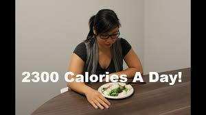 What 2300 Calories A Day Looks Like