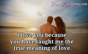Meaning Of Quote Cool I Love You Because You Have Taught Me The True Meaning Of Love
