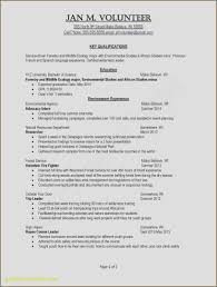 Skill Resume Template New Resume Sample New Blank Resume Template