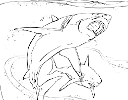Small Picture Printable Coloring Pages Shark Coloring Pages
